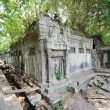Beng Mealea at Angkor, Cambodia — Stock Photo