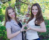 Photo of two beautiful twins — Stock Photo