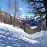 2013 Casaccia, Alpe Gana, Pian Segno, Casaccia — Stock Photo #40317869