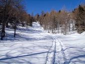 2013 casaccia, alpe Гана, Пиан segno, casaccia — Стоковое фото