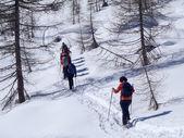 2013 Alpe Croslina — Stock Photo