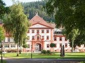 2013 Schwarzwald, Schaffausen, Klausenpass — Stock Photo