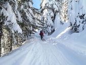 Val Blenio. snowy path — Stock Photo