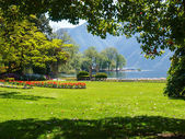 The botanical park of the city of Lugano — Stock Photo