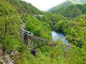 Palagnedra lake and the railway bridge — Stockfoto