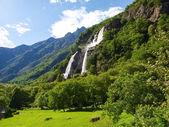 Waterfalls of Borgonuovo — Stockfoto