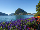 Monte San Salvatore seen from the park  — Stock Photo