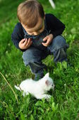 Sweet boy with a white cat — Stock Photo
