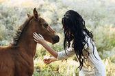 Little horse and brunette girl — 图库照片
