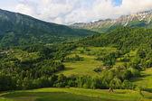 Alpine village Dreznica under Krn mountain — Stock Photo