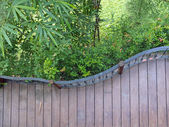 Wooden terrace — Stock Photo