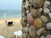 Shells and sea — Stock Photo