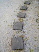 Kamienna ścieżka — Zdjęcie stockowe