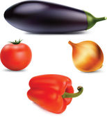 Vegetables set. Photo realistic vector. — Stock Vector