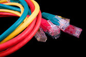UTP cables — Stock Photo