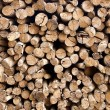 The stack of chopped fire wood — Stock Photo #49335215