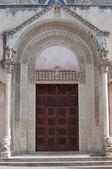 The ancient door — Stock Photo
