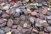 Small Buddha Coin — Stock Photo