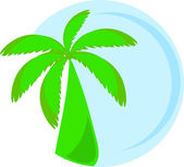 Illustration of palm — Stock Vector