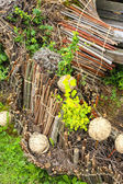 Wooden composition with plants and sticks — Stock Photo