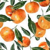 Modèle sans couture de mandarines — Stock fotografie