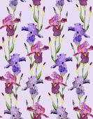 Irises Seamless Pattern — Stock Photo