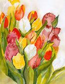 Tulips Bouquet — Stock Photo