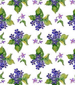 Viola Pattern — Stock Photo