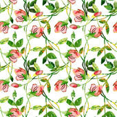 Roses seamles pattern — Photo