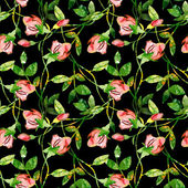 Roses seamles pattern — Stock Photo