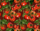 Tomatoes seamless pattern — Stock Photo