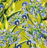 Agapanthus seamless pattern — Stock Photo