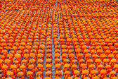BANGKOK , THAILAND - September 8 : 10,000 Buddhist monks waiting for people give food offerings on September 8, 2013 Pratunam in Bangkok, Thailand. — Stock Photo