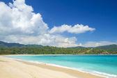 Mare spiaggia e tropicali — Foto Stock