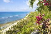 Seashore landscape — Stock Photo