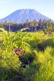 Mt. Agung, Amed, Bali. — Stock Photo