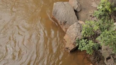 Water pollution. Dirty water. Rust water. — Stockvideo