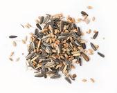 Seeds — Stock Photo