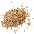 Wheat seeds — Stock Photo