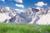Hory a trávy — Stock fotografie