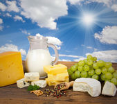 Productos lácteos — Foto de Stock