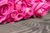 Rose blooms — Stock Photo
