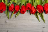 Tulip bouquet — Stock Photo