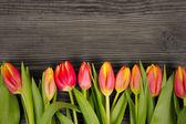 Buquê de tulipa — Foto Stock