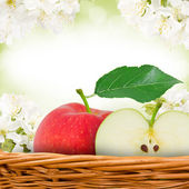 Fruit with slice — Stock Photo