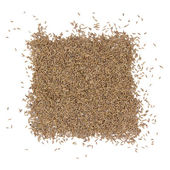 Cumin heap — Stock Photo