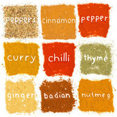 Spice powder — 图库照片