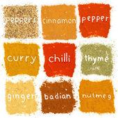 Spice prášek — Stock fotografie