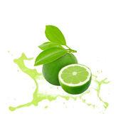 Lime splash — Stock Photo