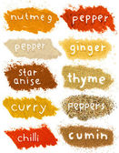 Spice powder — Stockfoto